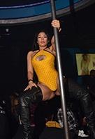 vrouwelijke stripper huren